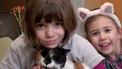 Zoe Zimmerman of Raritan, NJ plays with cat and sisters.