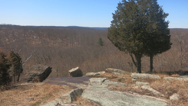 Two cedar trees and the two glacial erratics along the Hewitt=Butler Trail on Torne Mountain.