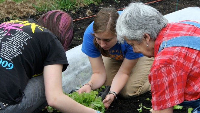 The 'Be Your Own Farmer' gardening series offers nine classes, beginning in March and running through October.