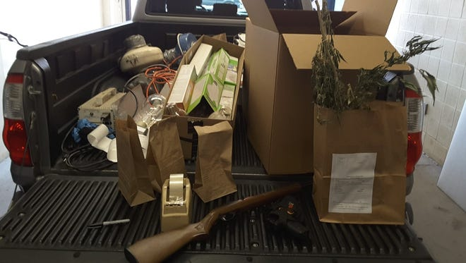 MARMET detectives seized two firearms, marijuana plants and harvested marijuana during a Wednesday search.