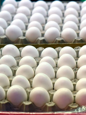 Rose Acre Farms of Seymour, Ind., is voluntarily recalling more than 200 million eggs due to possible contamination with the bacteria.