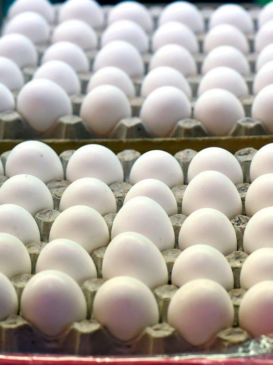 2018-2-8 eggs