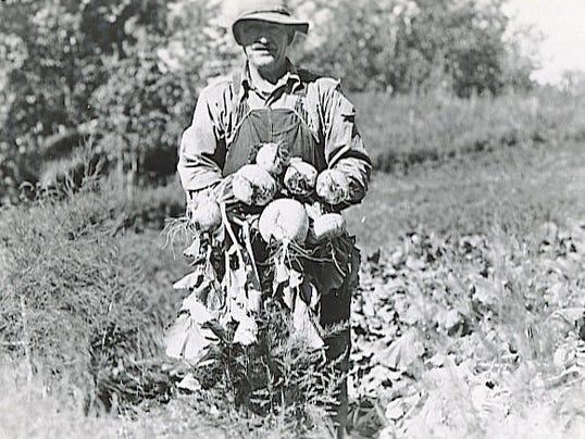 #2 1935 Matanuska turnips.jpg