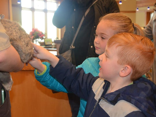 Tucker Darlington, 4, and his sister Alivia Darlington, 5, pet 'Radar' a Finnish giant rabbit, at Willard Library as part of the Zoomobile program on Thursday, April 5, 2018.