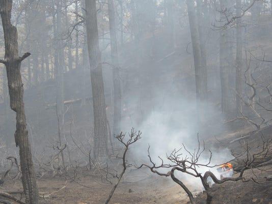 Alex Camp Road Fire