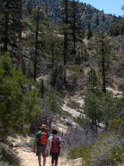 Hikers head towards the trailhead of the East Rim Trail