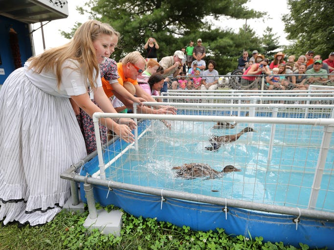 Katie Neighbors, left, lets her duck free as she and others compete in the Great American Duck Race at the Indiana State Fair on Thursday, August 7, 2014.