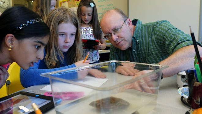 Bill Wright, a third-grade teacher at Kensico Elmentary School in the Valhalla School District, points out tadpoles to students Sangoeta Bahl, 9 and Caroline Conti, 8. Amid an overhaul of New York's teacher evaluation system, and the controversy of using standardizing testing as a key metric, many are questioning what measures should be used to judge teachers.