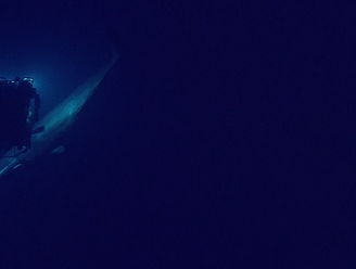 Giant whale interrupts ocean dive, inspects underwater robot