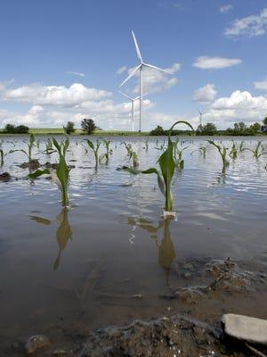 Water floods a farm field on Oak Road near Johnsburg. Tuesday, June 10, 2008.