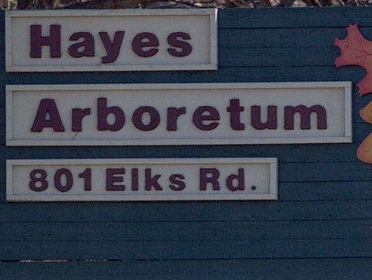 635494500839157142-hayes-sign