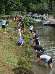 Members of Marine Mania help clear the Masso Reservoir