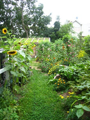 The lush greens and cheerful bright hues of summer warm this garden on Division Street in Keyport.