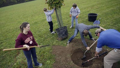 Tiffany Gibson, from left, Scott Bley, Claudia Bley, Casey Welling and Brady Abner add some more greenery to Otto Armleder Park by planting trees as part of Make a Difference Day, Saturday, Oct. 25,2014.