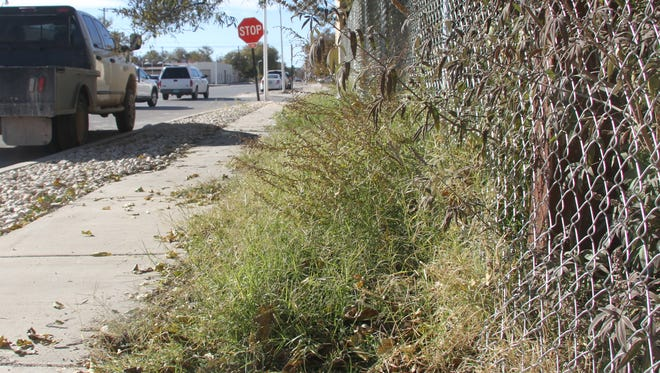The Carlsbad Fire Department and the City of Carlsbad Code Enforcement Department is working together to rid the city of overgrown and dried weeds as the pose a fire danger.