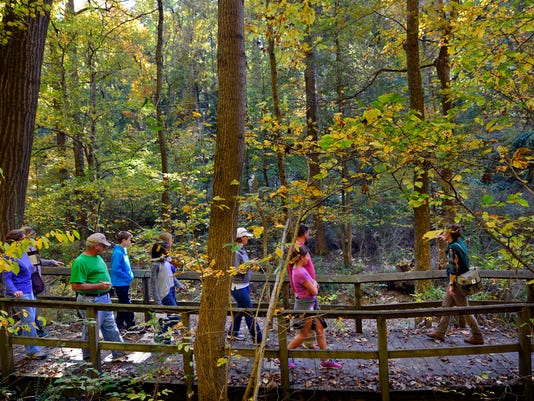 Naturalist Mary Ronan leads a group of people on a fall colors nature walk at the Richard M. Nixon County Park, Sunday October 11, 2015. Ronan educated the group on how and why leaf colors change in the fall, as well as pointing out native and invasive fruit-bearing plants that migrating birds rely on for food as the seasons change. Nixon Park has nature walks every Sunday through October and more events and special programs can be found by visiting www.yorkcountyparks.gov.  John A. Pavoncello - jpavoncello@yorkdispatch.com