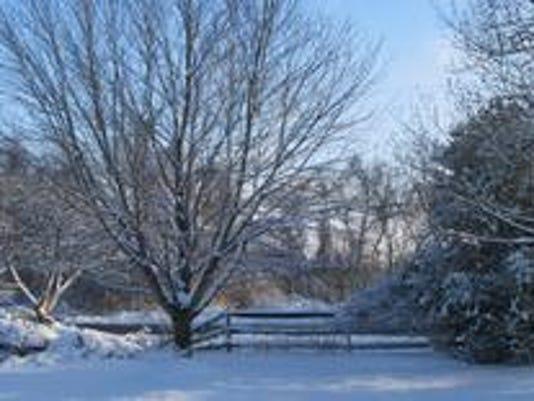 snowysunnytuesdayafternoon.jpg