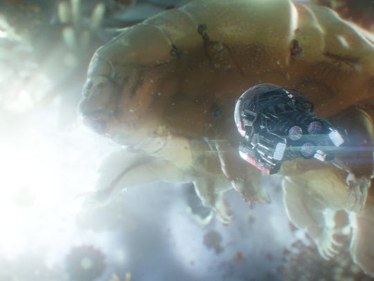 "Weird creatures and a wild landscape are part of the Quantum Realm in ""Ant-Man and the Wasp."""