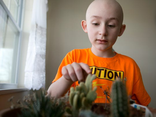 Brighton Pogodzinski, 5, of Colby demonstrates how to not touch the cacti at his great-grandmother, Eileen Ritter's house in Colby, Thursday, April 2, 2015.