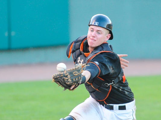 -062614jmo-Shorebirds-5224.jpg_20140626.jpg