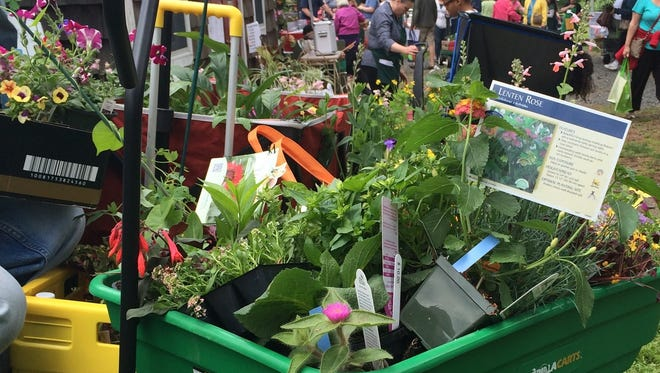 The Union County Spring Garden Fair and Plant Sale will be held on Sunday, May 21, rain or shine, from noon to 4 p.m.
