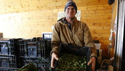 Tony Schultz holds up a tray of brussel sprouts Monday, Nov. 13, 2017, in his storage room at Stoney Acres Farm in Athens, Wis.