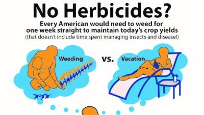 Vacation or weeding on a farm? Every US adult would need to take one week of vacation to weed at a farm without the use of herbicides to maintain today's crop yields.