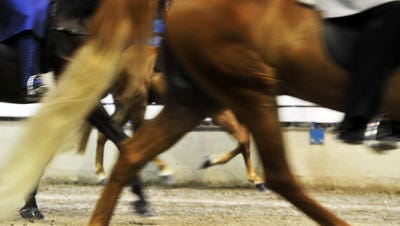 Horses walk in the ring during the Tennessee Walking Horse National Celebration in 2012.  This year's Celebration runs through Aug. 30.