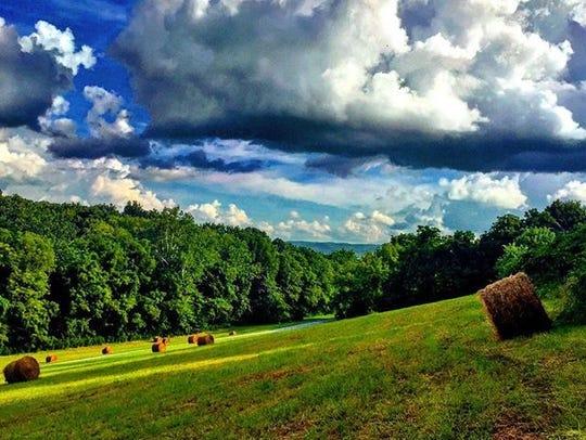 A Shenandoah Valley view.