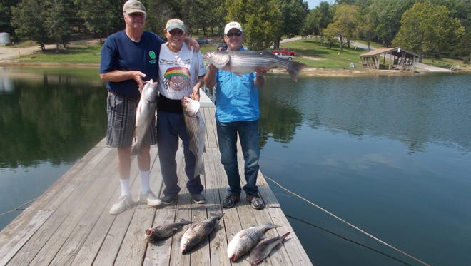 Paul, Ralph and Mike show off a good day's catch on a recent Norfork Lake trip for stripers.