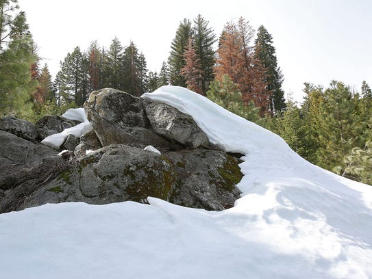 Snow blankets the Sierra National Forest in March 2016.