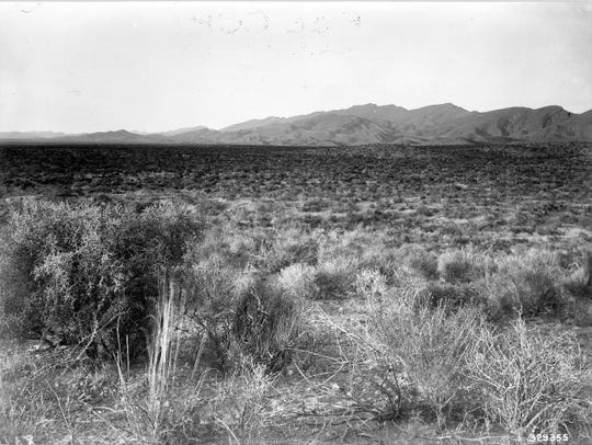 This 1912 photo of the Jornada Basin shows grass and