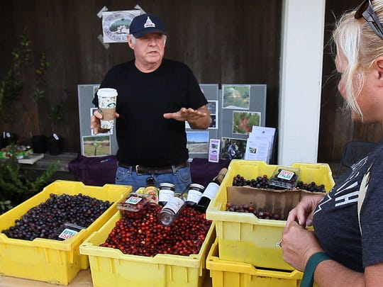 Dave Van Vorst, a beach plum farmer in Seaville, Cape May County, talks with a festival goer about the fruit at the 2015 Beach Plum Festival.