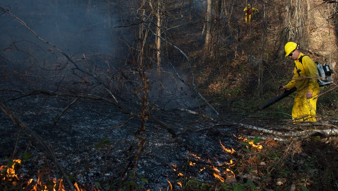 Firefighters with the U.S. Forrest Service aided local fire departments in containing a large brush fire in Fairview Friday afternoon.