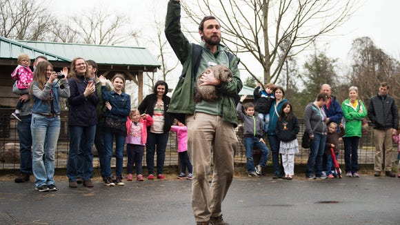 Eli Strull of the Western North Carolina Nature Center holds Nibbles, a female groundhog while signaling to a crowd of about 100 that the 12-year-old weather predicting rodent did not see her shadow predicting an early spring Tuesday at the nature center.