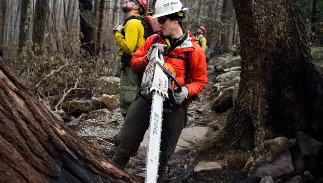 National Park Service firefighter Jeff Singer, from the Rocky Mountain National Park in Colorado, prepares to saw a fire damaged tree in the Great Smoky Mountains National Park near Gatlinburg, Tenn., Wednesday, Dec. 7, 2016. Hundreds of firefighters continue to conduct operations within the park as the Chimney Top 2 Fire is reported to be 64% contained as of Wednesday morning.