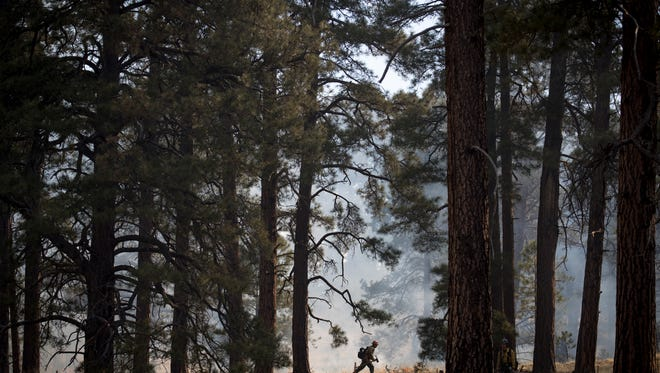 A member of the Flagstaff Hotshots uses a drip torch to ignite the Howard prescribed burn, April 3, 2018, south of Flagstaff, Arizona.