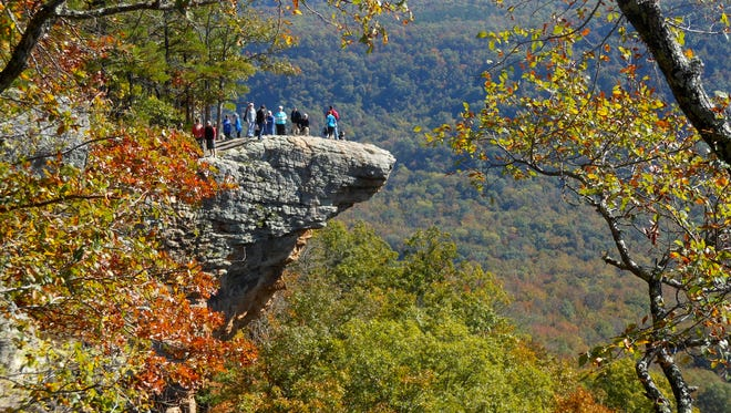 Hawksbill Crag  is a popular hiking destination in Newton County, Arkansas.