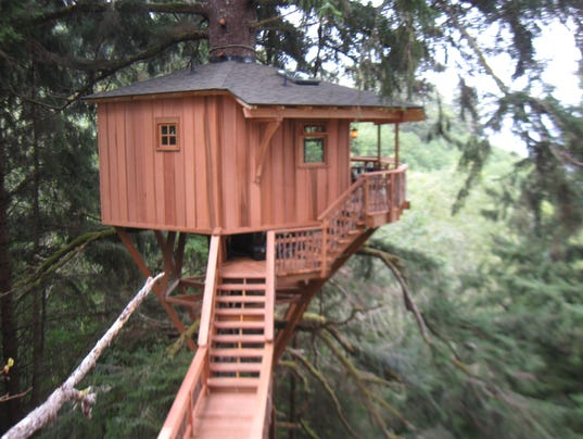 39 Treehouse Masters 39 Fined For Illegal Treehouse In Oregon