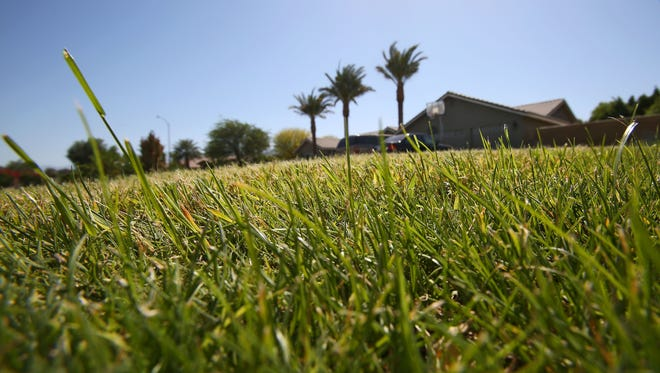Some of the homes in Bermuda Dunes that receive water from Myoma Dunes Mutual Water Company have large lawns.