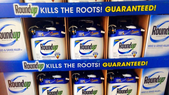 Roundup weed killer by Monsanto.