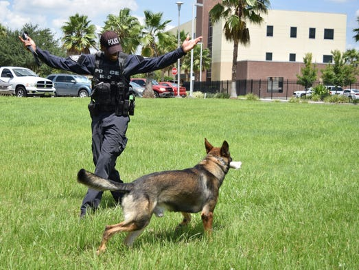 Scott praises Justice after the K-9 correctly completes