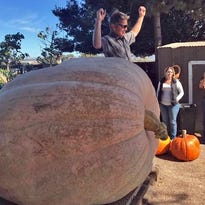 Winning pumpkin weighs in at 1,938 pounds