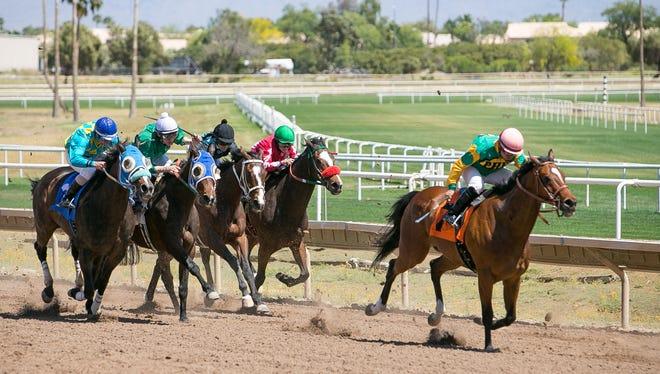Jockeys race at Turf Paradise horse racetrack in Phoenix on April 14.