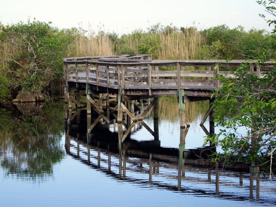 Anhinga Trail is one of three trails accessible from