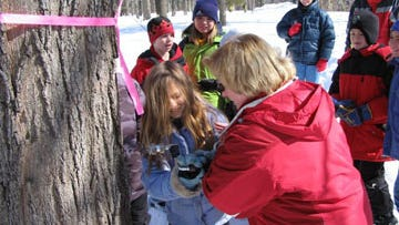 "Volunteers are needed for the MacKenzie Center's ""sugar bush"" education program and maple syrup festival."