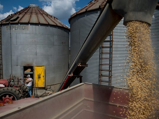 Donald Temme stands at a grain bin as soybeans come
