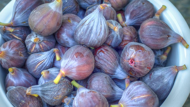 Figs are one of those fruit trees that produces prodigiously.