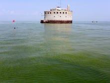 Why do harmful algae blooms keep happening on Lake Erie?