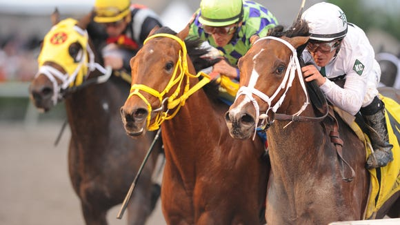Constitution (on rail in white bridle and white silks) won the Florida Derby over Wildcat Red (middle) and Vicar's in Trouble.